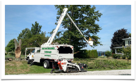 Great Dane tree trimming bucket truck image