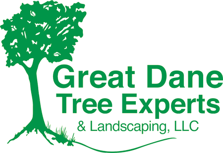 Great Dane Tree Experts